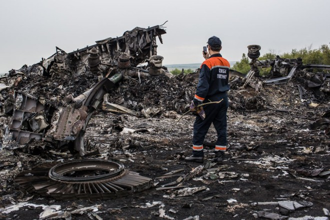 mh17-search-sunflowersashes-3
